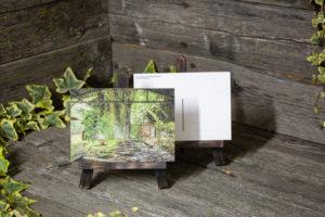 Lost Place Postkarte ivy shelter